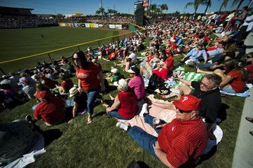 Fans sit in the outfield berm to watch the Philadelphia Phillies play the New York Yankees during a spring training baseball game at in Clearwater