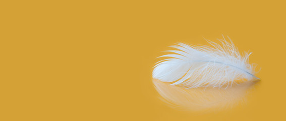 Feather fluffy white texture macro view. Luxury softness concept. Bird plumage feathering on yellow background. Shallow depth of field, soft focus. Copy space photo