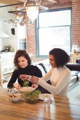 Lesbian couple preparing salad