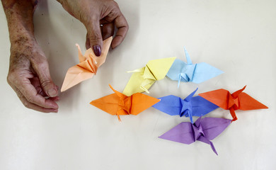 A member of the Japanese community in Peru makes origami cranes in Lima
