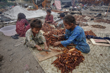 Children cut strips of meat to be hung up to dry on the outskirts of Karachi