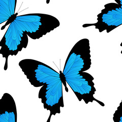 Seamless pattern with flying vivid tropical butterfly on white background. Vector illustration for textile, wallpaper, packaging, fashion concept
