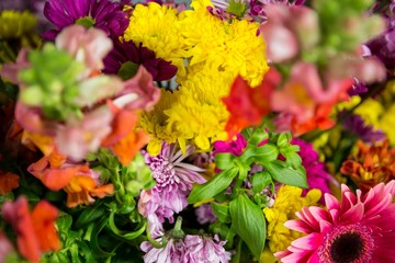 Flowers in florist shop