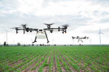 Agriculture drone flying on the green corn field
