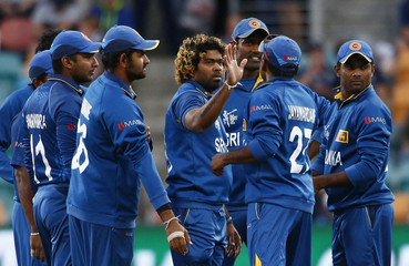 Sri Lankan bowler Malinga celebrates with team mates after catching out Scotland's Coetzer during their Cricket World Cup match in Hobart