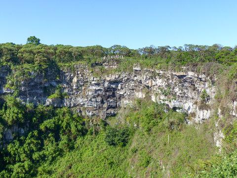 Los Gemelos Crater on Santa Cruz Island Galápagos Islands Ecuador