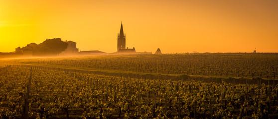 Vineyard and village of Saint-Emilion at sunrise, panoramic, France