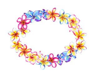 Plumeria flowers frame composition, oval wreath. Watercolor illustration isolated on white background. Template for your design.