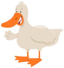 duck farm animal cartoon