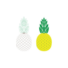 Pineapple tropical fruit.Health symbol. Plant silhouette element collection for Icon, logo, print, label design, web, decoration, t-shirt. Vector set illustration isolated on white background.