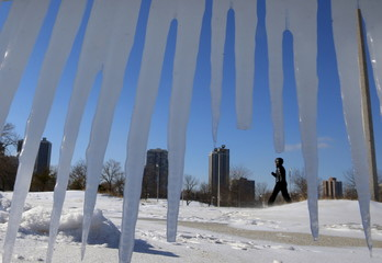 A woman is framed by hanging icicles as she walks along a path in Chicago