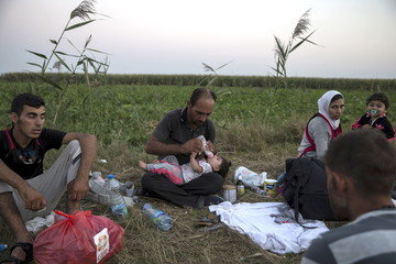 A migrant, hoping to cross into Hungary, feeds a child with milk as they sit on a field outside the village of Horgos in Serbia, towards the shared border with Hungary