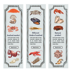 Colorful Sketch Natural Seafood Vertical Banners