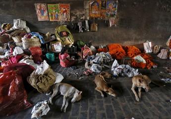The Wider Image: Street life in Kolkata