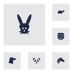 Set Of 6 Brute Icons Set.Collection Of Horse, Aquila, Tortoise And Other Elements.