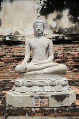white buddha statue around wat yai chai mongkhon