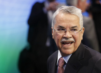 Saudi Arabian Oil Minister al-Naimi talks to journalists during the OPEC seminar in Vienna