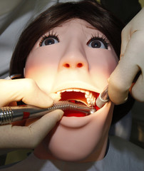 A dentist demonstrates on a dental patient robot at its unveiling ceremony at Showa University in Tokyo