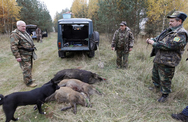 Belarussian hunters talk and take photos after a successful hunt for wild boars in a forest near the village of Barovka