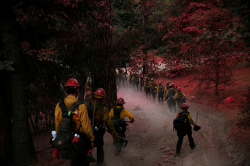 Firefighters with the Kings River Hotshots hike through trees covered in pink fire retardant after building a fire line to protect homes in the Deer Lodge Park area during the Pilot Fire in San Bernardino county near Lake Arrowhead, California