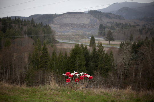 Artificial flowers left for victims of a mudslide are seen with the site of the slide in the background in Oso, Washington