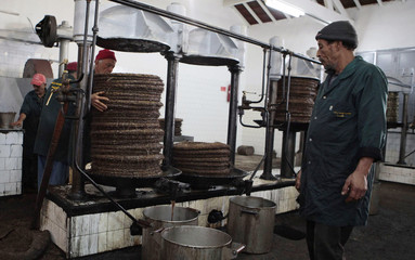 A worker prepares to extract oil from olive paste at a traditional olive oil processing factory in Tebourba