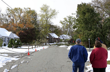 Neighbours watch as a tree crew works to remove downed trees from wires, two days after an early snowfall in Northborough