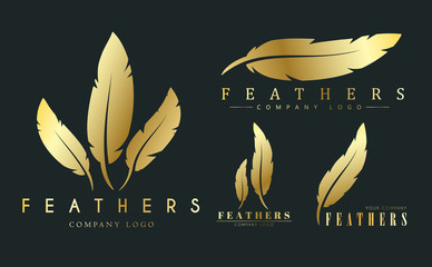 set of gold logos with feathers for writers or publishers. Wall mural