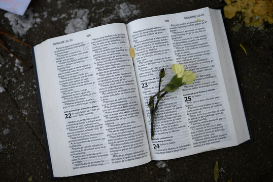 A flower is left on the page of an open Bible outside a hospital where Mandela is being treated in Pretoria