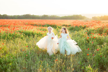 little girl model, childhood, fashion, summer, spring concept - two little cute girlfriends in white and blue outfits playing games on poppy field, in hands little princess have buds of red flowers
