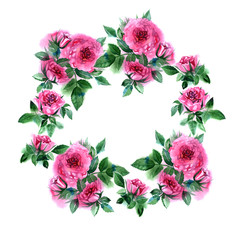 Rose flower wreath. Floral circle border. Watercolor frame