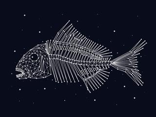 Skeleton of fish, constellation, stars, vector