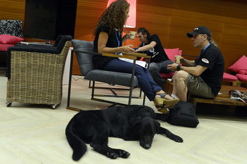 Partially sighted musician and filmmaker Ibon Casas talks next to his guide dog Roger the Dodger at the San Sebastian Film Festival