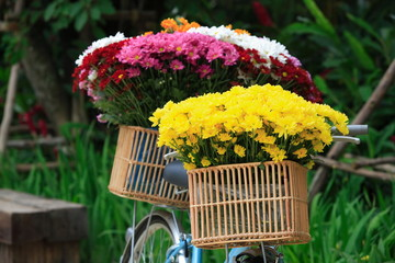 vintage old bicycle with flowers bouquet in basket at garden outdoor