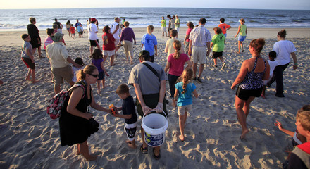 Tourists walk to the surf after watching an inventory of a hatched nest at Myrtle Beach State Park in Myrtle Beach