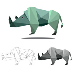 rhino polygon