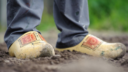 Dutch clogs on the feet of a worker, worn out and standing in loose sand, some green in the background