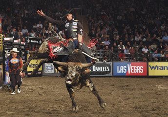 Cowboy Paulo Lima rides the bull Kitty Kat during the Professional Bull Riders (PBR) Madison Square Garden Invitational in New York