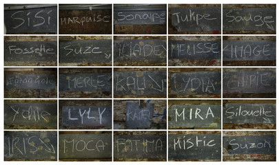 A combination of pictures displaying cows names written on a slate are pictured in the barn of cheese maker and farmer Murith at the Proveta pasture in Gruyeres
