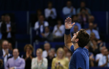 Del Potro of Argentina reacts after winning his semi final match against Roger-Vasselin of France at the Swiss Indoors ATP tennis tournament in Basel