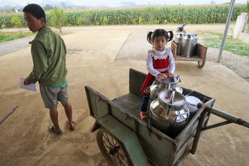 A girl stands next to milk containers at a milk trading center in Moc Chau town, 200km northwest of Hanoi