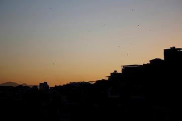 2016 Rio Olympics: Rio's kite runners