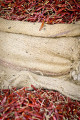 chilli in Nepal
