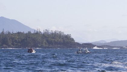 Boats search in a grid pattern west of Vargas Island for the last remaining missing person following the capsizing of the Leviathan II whale-watching boat in Tofino