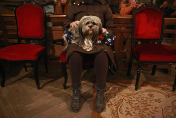 A dog sits on its owner as they wait for the start of mass at Madrid's San Anton church