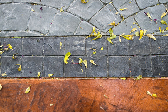Dried flower and leaves falling down on printed concrete texture.