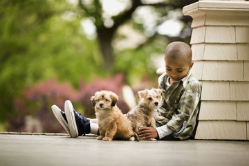 Portrait of a boy sitting on a porch with two puppies.