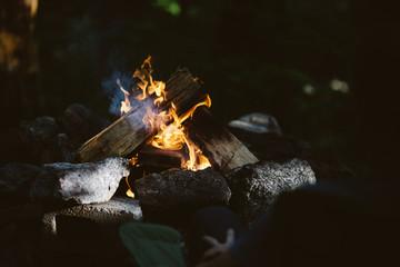 Campfire lit through trees