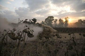 An Israeli soldier rides atop an armoured personnel carrier (APC) past dried sunflowers after crossing back into Israel from Gaza