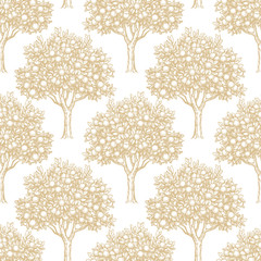Seamless pattern with orange trees